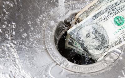 Bipolar II and the Money Drain—Beware Snake Oil.