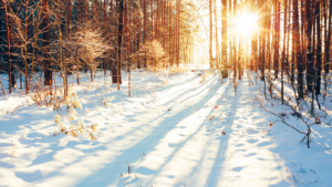 How Bipolar II Disorder Affects Daily Life: Notes From A Winter Day